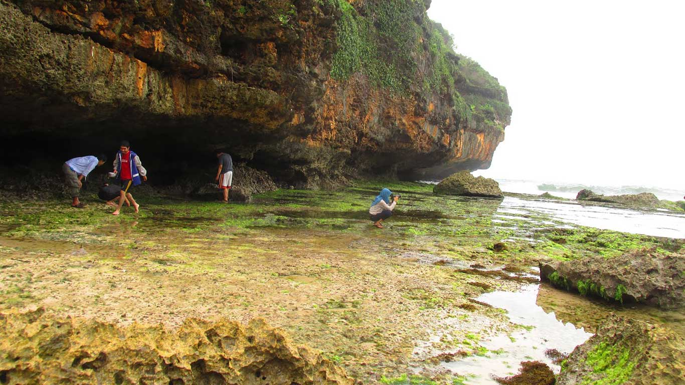 Objek Wisata Pantai Butuh