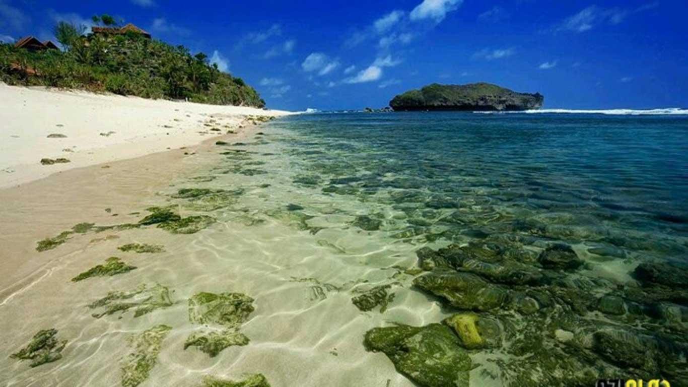 Snorkeling-Pantai-Sadranan