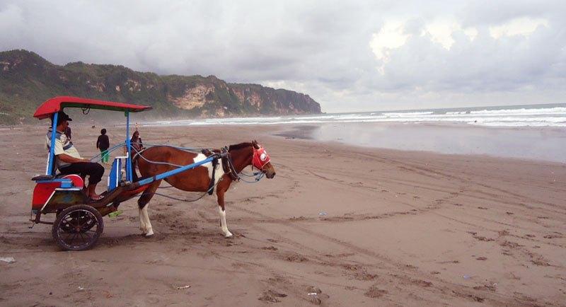 Naik Delman Di Pantai Parangtritis