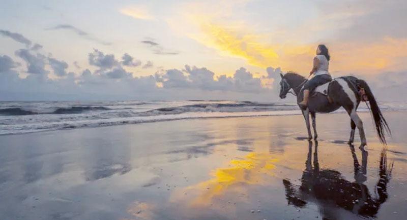 Naik Kuda Di Pantai Parangtritis
